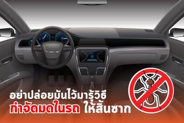 วิธีกำจัดมดในรถ