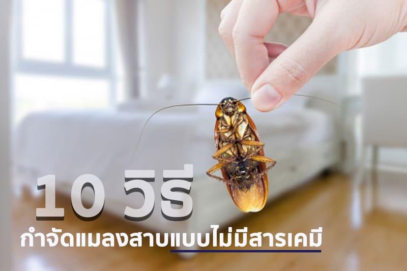 10 วิธี