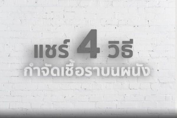 4 วิธี